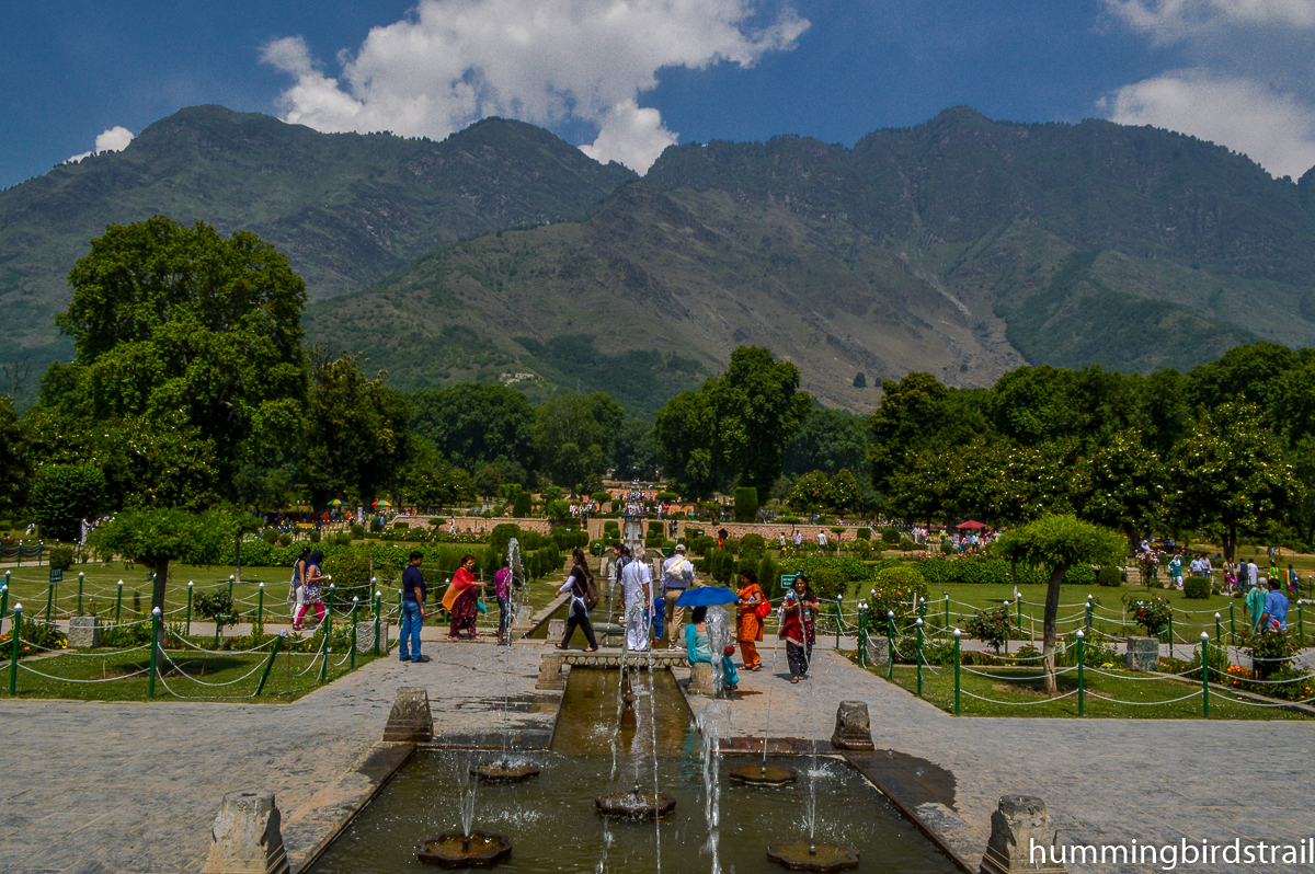 Zabarwan Ranges from Nishat Bagh
