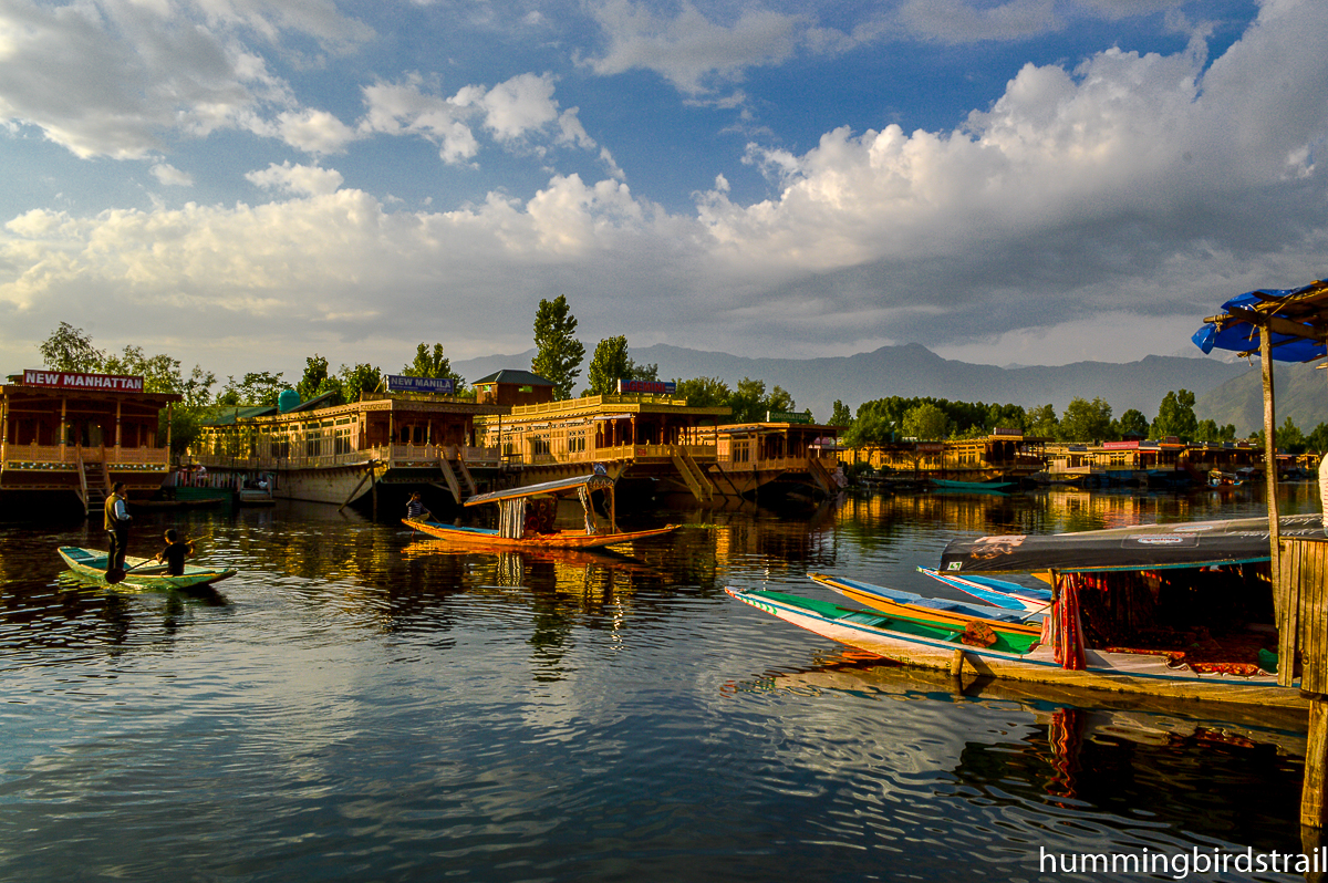Busy Dal Lake